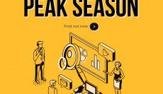 E-commerce planning for peak season